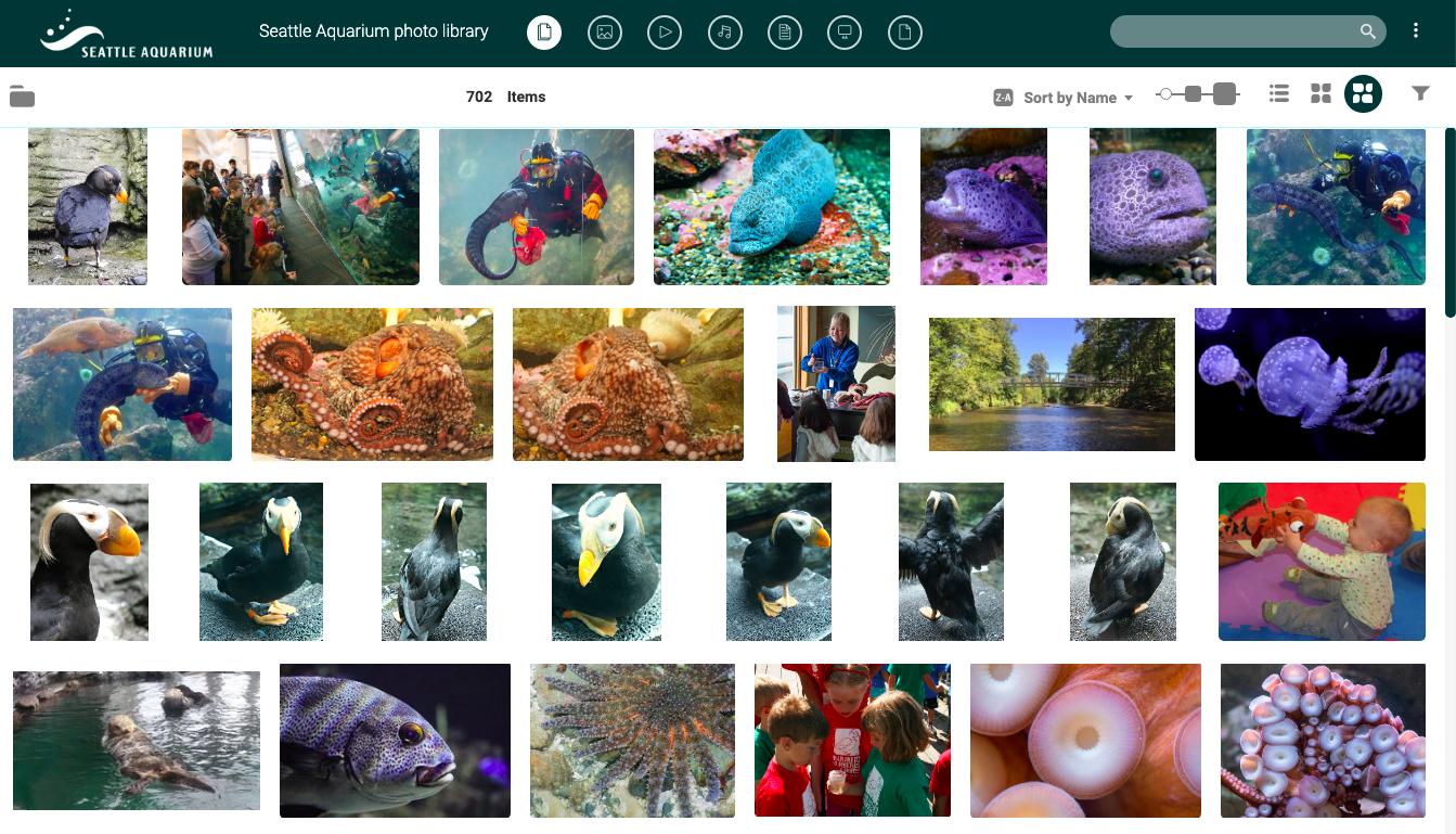 Seattle Aquarium Public Portal with Canto