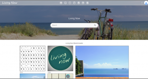 Screenshot of a branded Portal in the Canto DAM for Living Now.