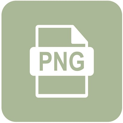 A picture of the PNG file type logo.