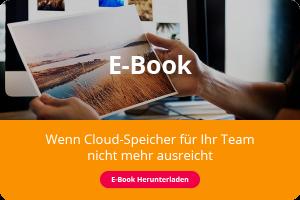 Das Cover eines E-Book, es zeigt ein Paar Hände, die ein ausgedrucktes Foto zum Vergleich mit weiteren Fotos auf einem Bildschirm im Hintergrund hochhalten.