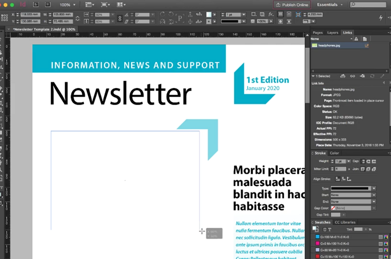 A user creates a newsletter using Adobe InDesign.