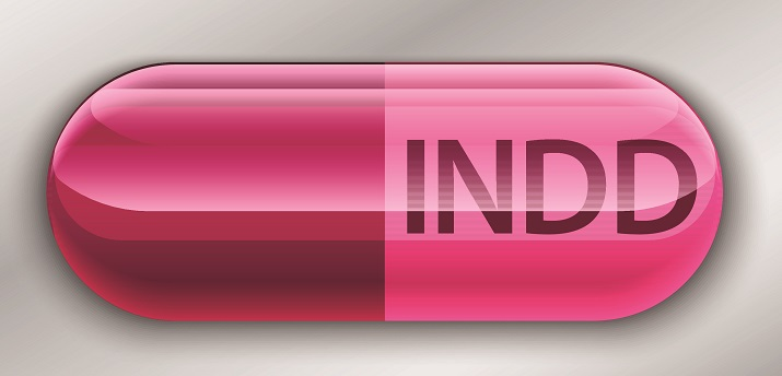 A screenshot of the INDD logo.