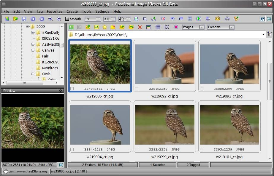 The FastStone Image Viewer interface.