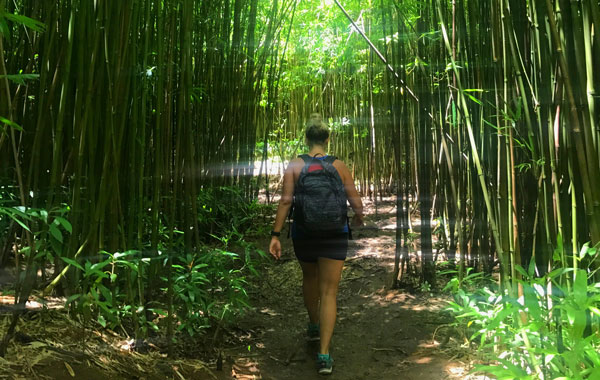 Carin Martens hiking through a bamboo forest.