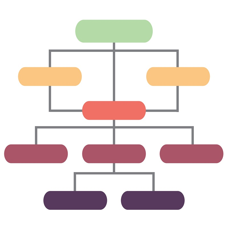 A colored structural hierarchy.