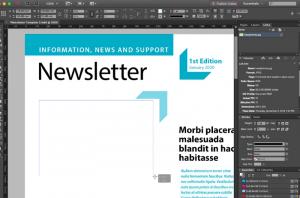 Ein Nutzer legt mit Adobe InDesign einen Newsletter an.