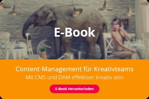 Cover des E-Books 'Content Management für Kreativteams', das eine elegante Frau zeigt, die im selben Raum mit einem Elefanten sitzt, der Möbel im Hintergrund zerstört.