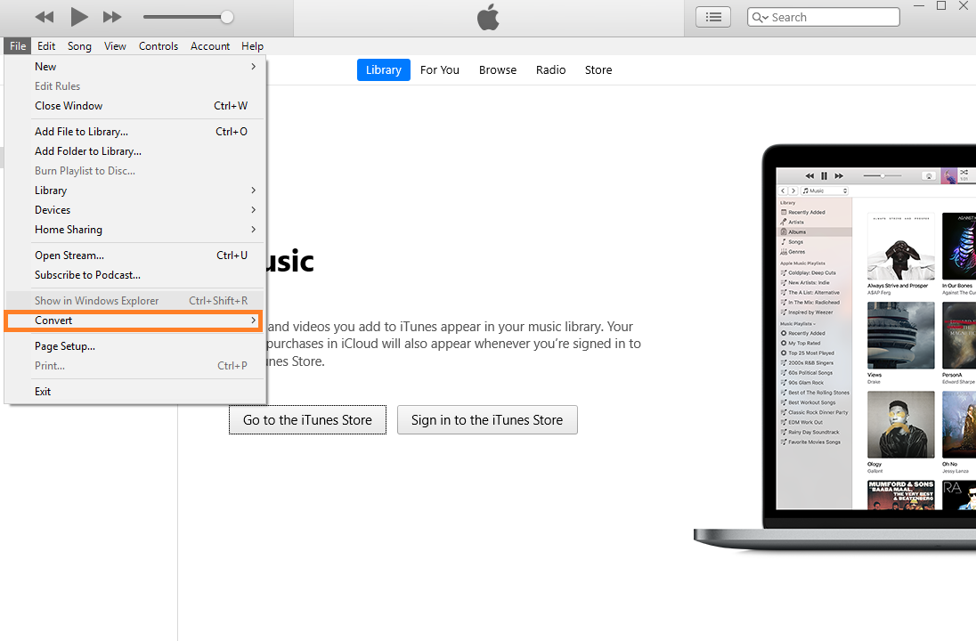 A screenshot of iTunes.
