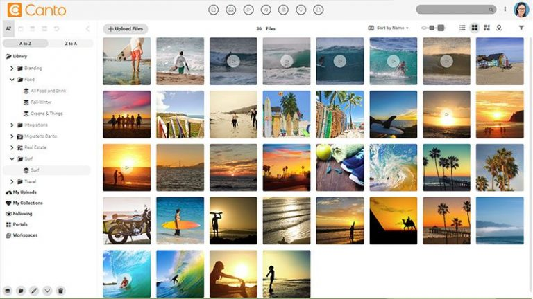 Screenshot of the main media library of the Canto DAM and the folder and album tree structure to the left side; it shows previews of images and videos concerning leisure and surfing.