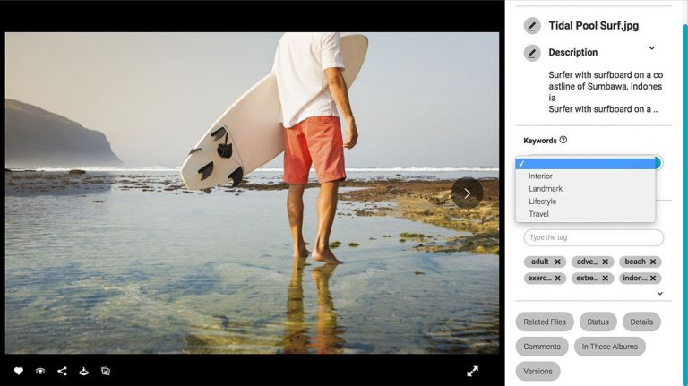Screenshot of the detailed view of an asset in the Canto DAM; it shows the picture of a surfer and the image title, description as well as keywords and tags to the right.