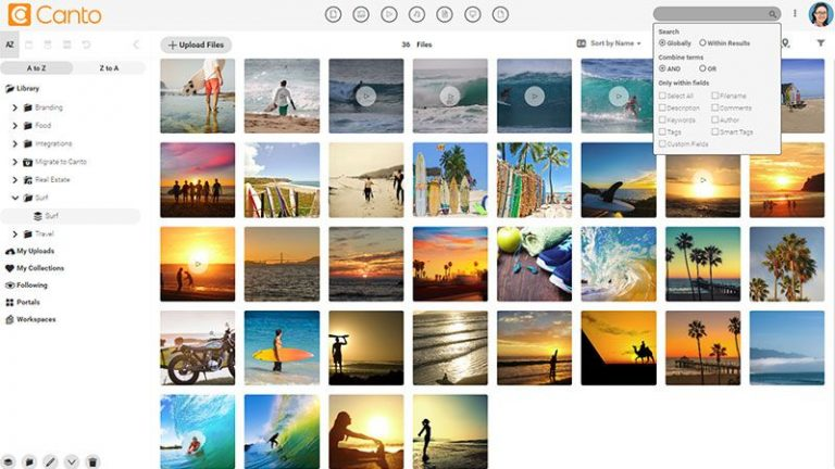 Screenshot of the main media library of the Canto DAM and the folder and album tree structure to the left side and the search function dropdown box at the top; it shows previews of images and videos concerning leisure and surfing.