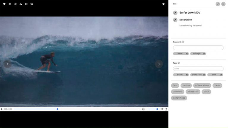 Screenshot of the detailed view of an asset in the Canto DAM; it shows the still of a video of a surfer on his board riding a wave, also the video title, description as well as keywords and tags to the right.
