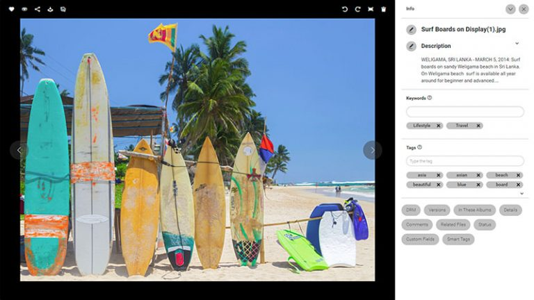 Screenshot of the detailed view of an asset in the Canto DAM; it shows surfboards on display at a beach and the image title, description as well as keywords and tags to the right.