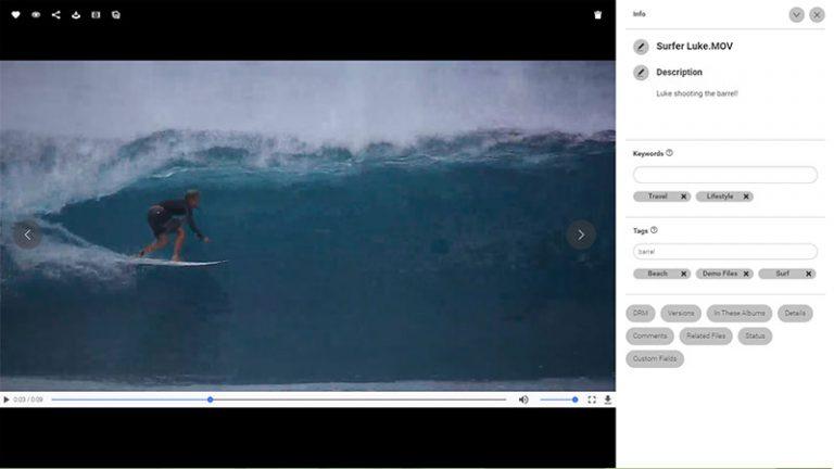 Screenshot der Detailansicht eines Assets im DAM-System von Canto; er zeigt das Standbild eines Videos von einem Surfer auf seinem Board, der auf einer Welle reitet, und rechts davon den Titel des Videos, die Beschreibung sowie die Kategorien und Schlagworte.