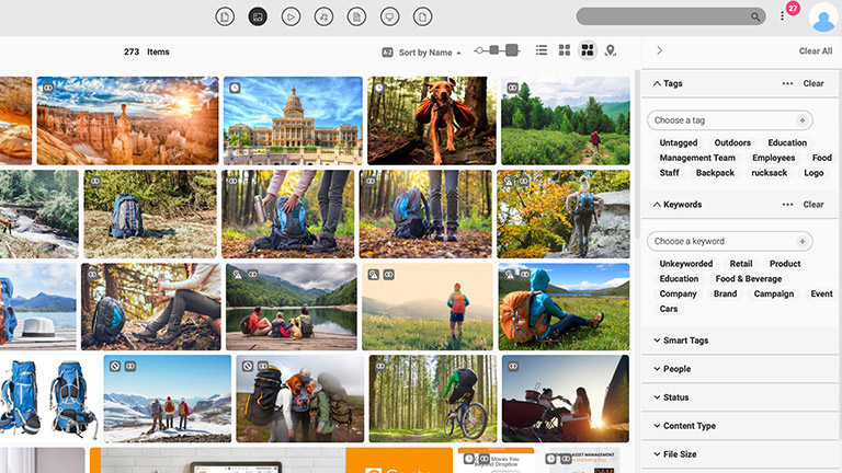 Screenshot of the main media library of the Canto DAM with previews of images and it also shows the available filter options at the right side.