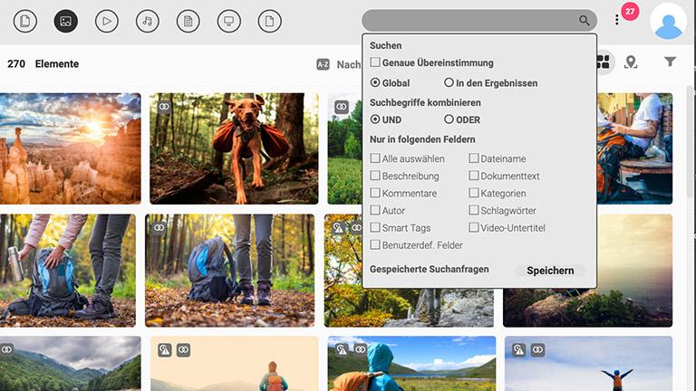 Screenshot der Hauptmedienbibliothek des DAM-Systems von Canto mit Voransichten von Bildern und die Suchleiste anzeigt.