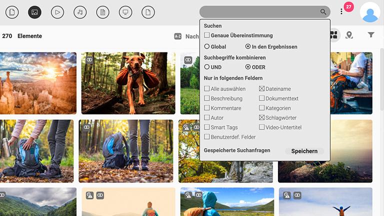 Screenshot der Hauptmedienbibliothek des DAM-Systems von Canto mit der Baumstruktur für Ordner und Alben auf der linken Seite; er zeigt Voransichten von Bildern sowie die verfügbaren Sucheinstellungen am oberen Bildschirmrand.