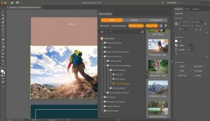 Screenshot der Benutzeroberfläche von Adobe Illustrator mit der Canto DAM-Integration mit der Baumstruktur für Ordner und Alben.