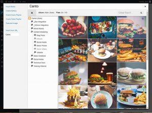 Screenshot der WordPress Integration mit dem DAM-System von Canto.