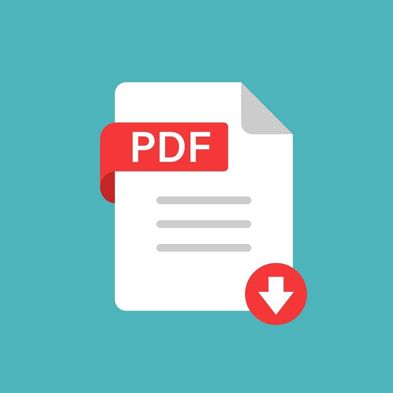 The PDF file icon.