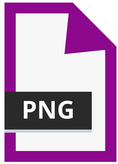 A screenshot of the PNG icon.