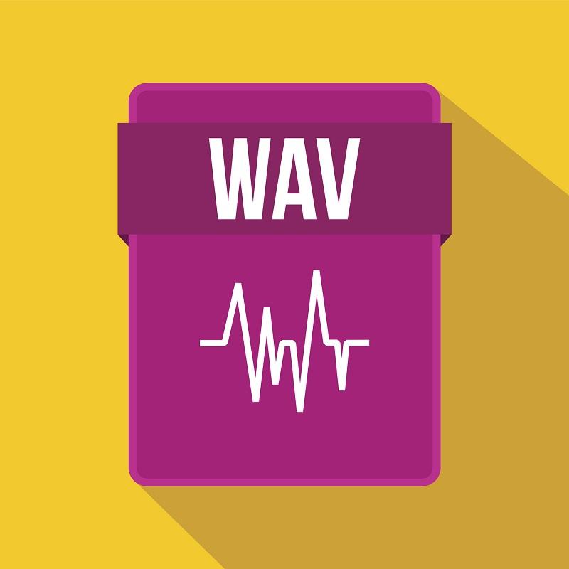 The WAV audio file icon.