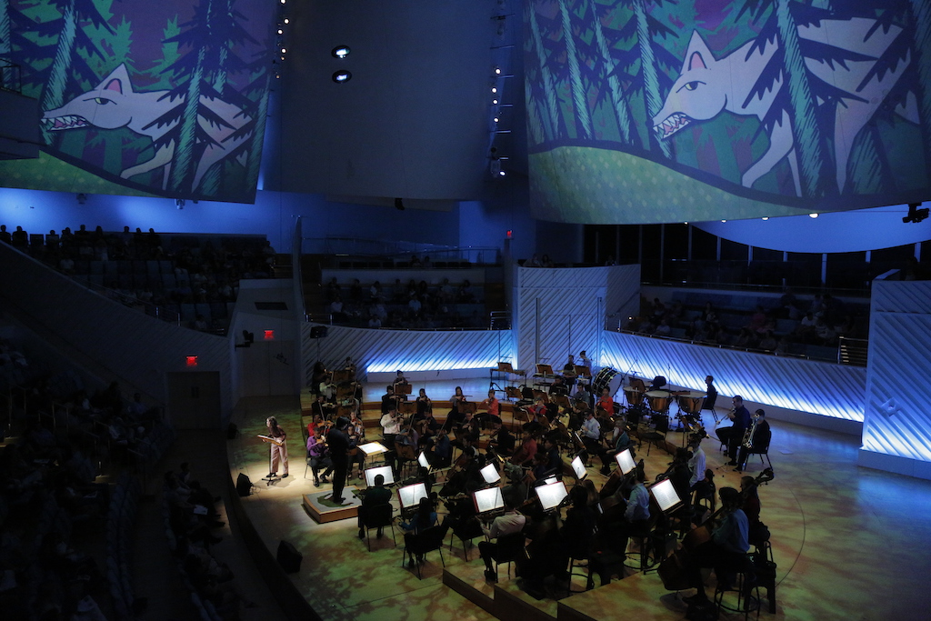 Photo of an orchestra in a concert hall with animations on the walls.