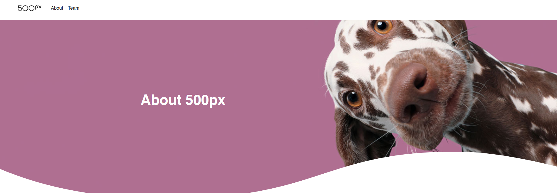 The 500px website.