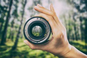 Eine Hand, die im Wald eine Kameralinse hochhält.