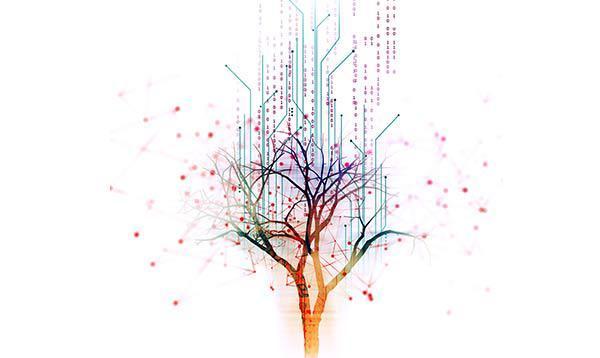 Darstellung eines Baums vor einem weißen Hintergrund, um den Dateneinträge abgebildet sind.