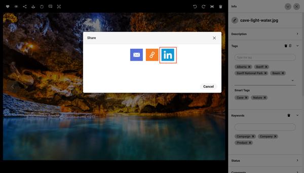 Ein Screenshot zeigt, wie man Assets von Canto in LinkedIn teilen kann.