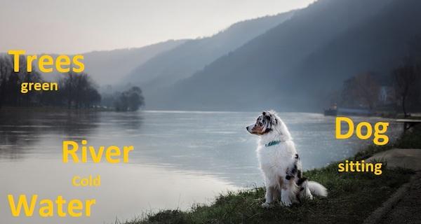 Ein Bild von einem Hund an einem See; die Objekte im Bild werden von beschreibenden Texten überlagert.