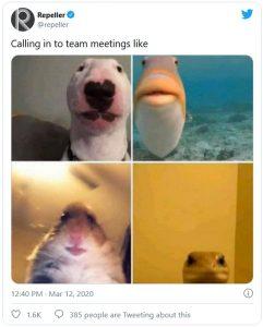 Screenshot eines Twitter-Posts zu einem Team-Meeting.