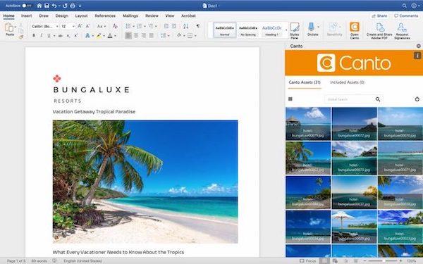 Eine Vorschau auf den Canto Connector für Microsoft Word im Einsatz.