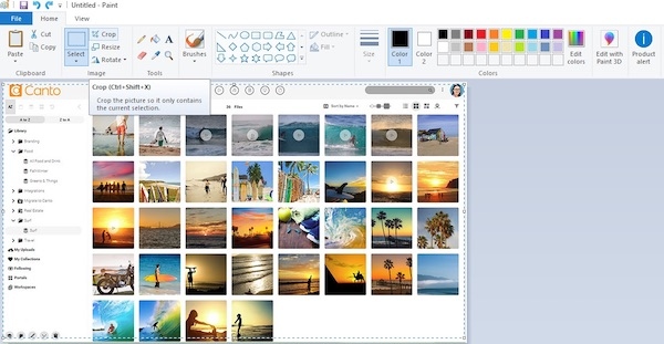 Ein Screenshot eines Bildes im Programm Paint, mit dem man Bilder zuschneiden kann.