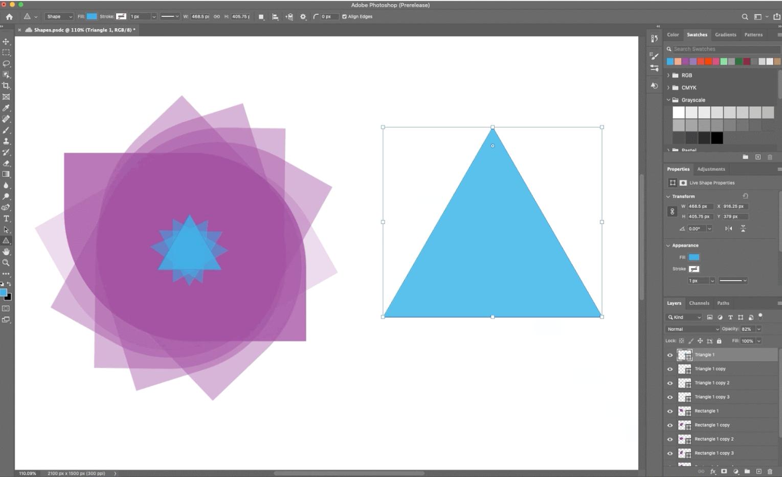 The Adobe Photoshop system.
