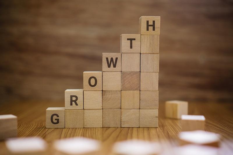 Blocks that read 'growth'.