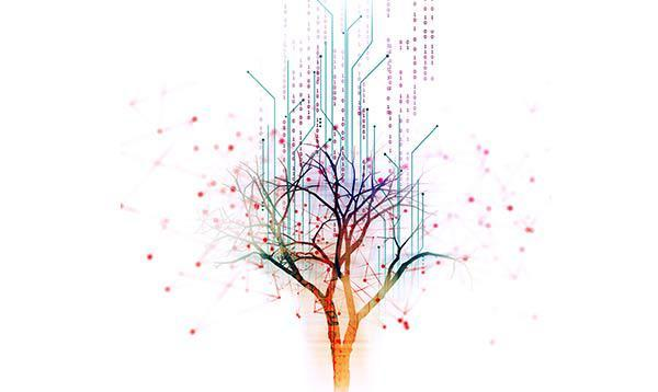 A tree of data with white background.