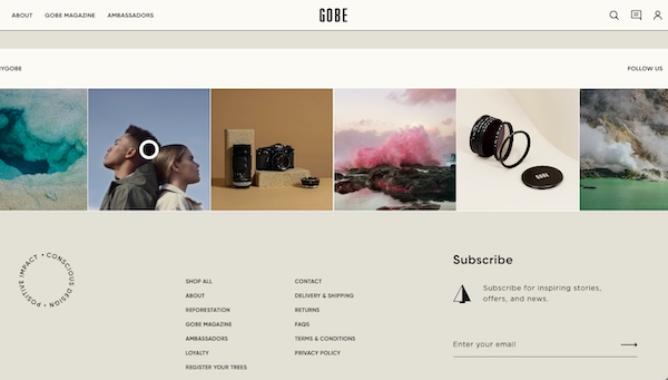 Screenshot of Gobe website with subtle email sign-up form in footer.
