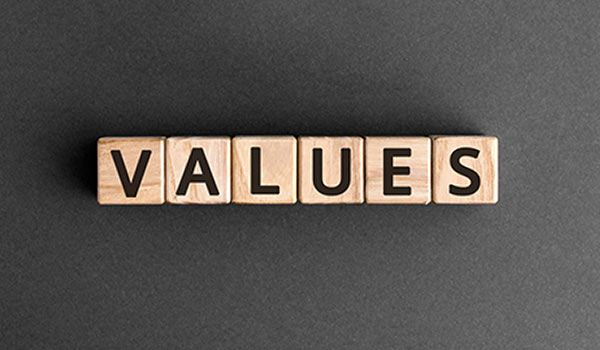 A group of blocks that spell 'values'.