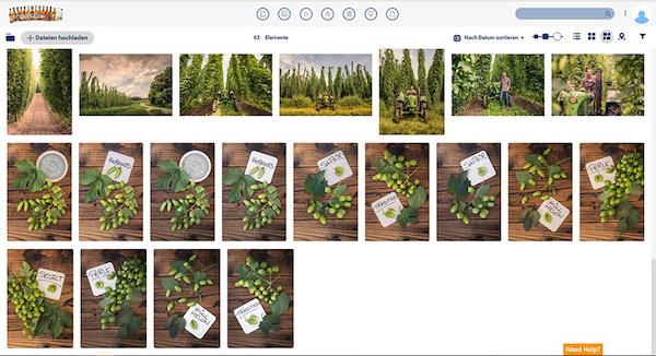 Screenshot von Canto in der Praxis beim Einsatz für Kulmbacher; es zeigt Bilder von einem Produkt.