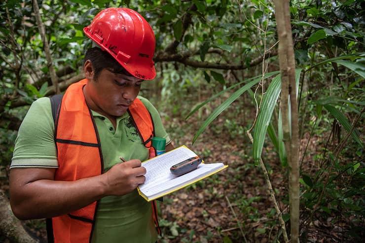 Ein Mitglied des FSC Denmark macht sich im Wald Notizen.