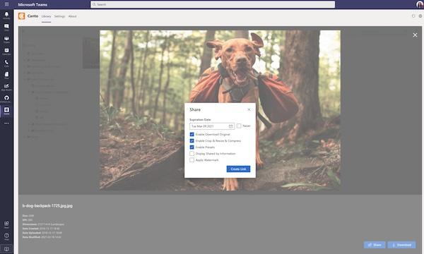 A screenshot showing how the Canto DAM works within Microsoft Teams.
