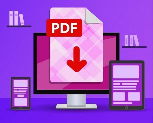 Ein PDF-Dokument auf einem Desktop-Computer.