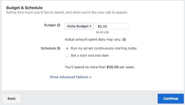 Screenshot des Formulars für Anzeigengebote von Facebook.