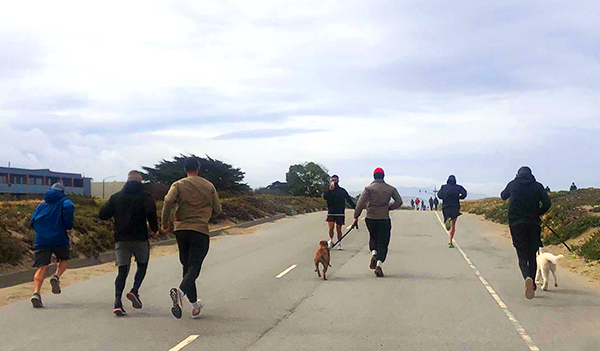 Canto team runs a 5k along a highway with two dogs.