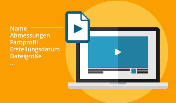 Neben einer Videodatei werden verschiedene Informationskategorien für Video-Metadaten angezeigt.