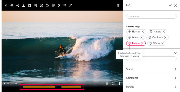Preview of video with smart tags